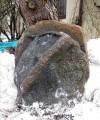 Piatră vindecătoare descoperită prin hazard în Polonia