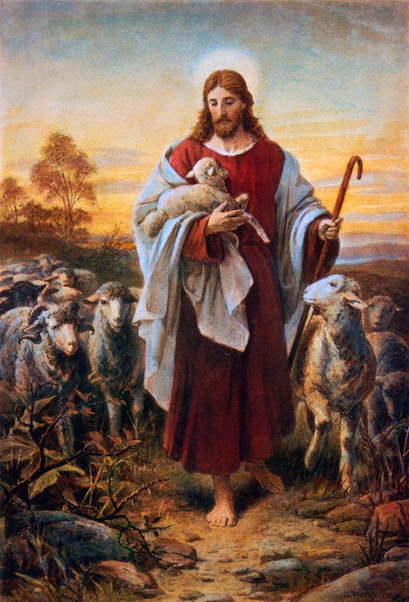 Pictură de Bernhard Plockhorst, Bunul păstor, sursă Wikipedia.