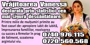 Banner-300x150-Vanessa-3