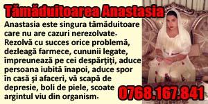 Banner 300x150 Tamaduitoarea Anastasia