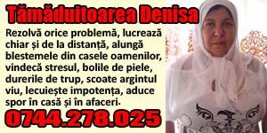 Banner 300x150 Tamaduitoarea Denisa