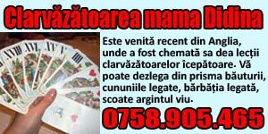Banner 300x150 Clarvazatoarea Mama Didina 555