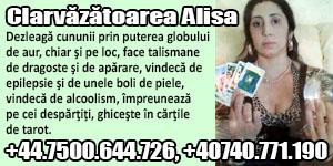 Banner 300x150 Alisa