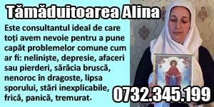 Banner 300x150 Tamaduitoarea Alina