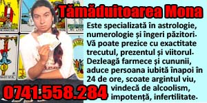Banner 300x150 Tamaduitoarea Mona