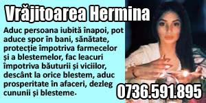 Banner 300x150 Vrajitoarea Hermina